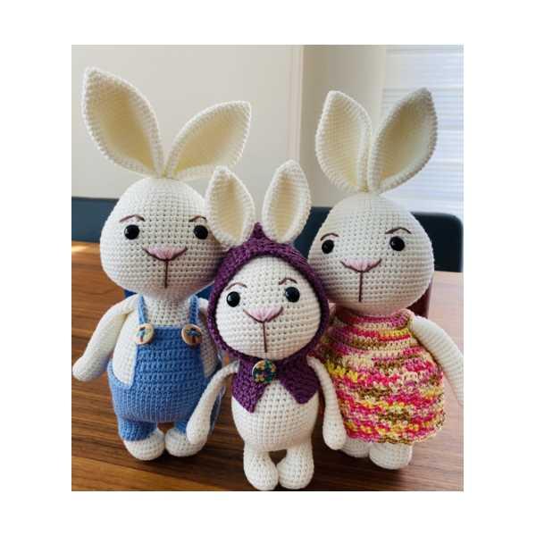 Tavşan Ailesi