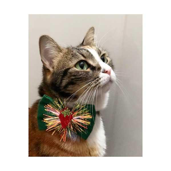 Kedi Tasması ( Sweet Strawberry )