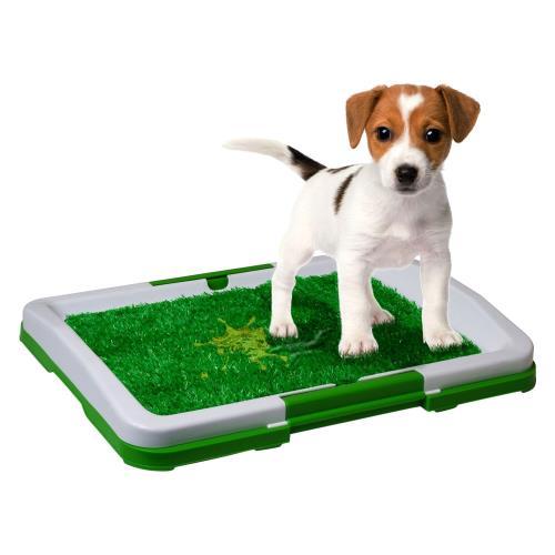 Yavru Köpek Tuvalet Eğitim Seti - Puppy Potty Pad