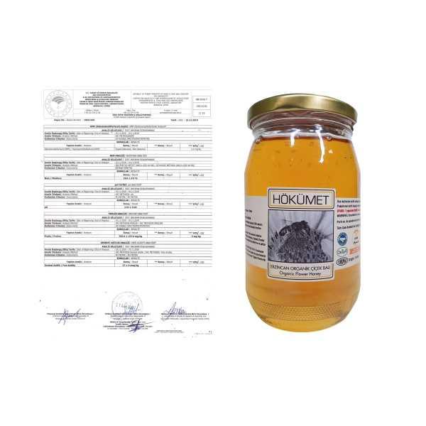 Hökümet Bal Organik Balı 480 gr